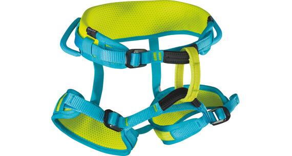 Edelrid Finn II klimgordel Kinderen groen/blauw